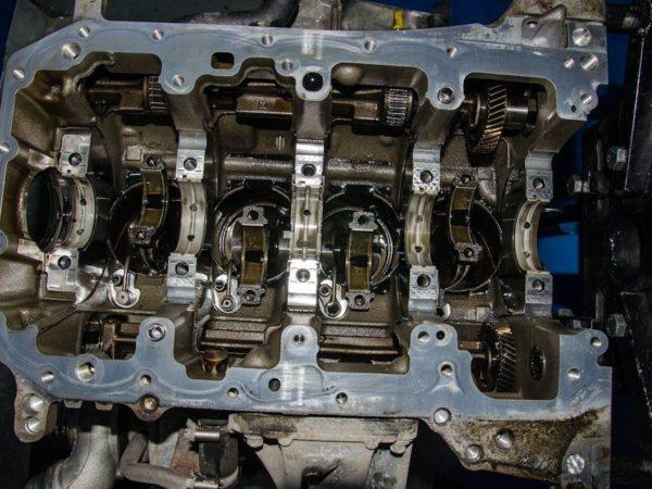 DSC4973 (1)