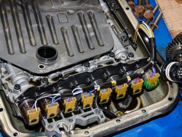 DSC4985